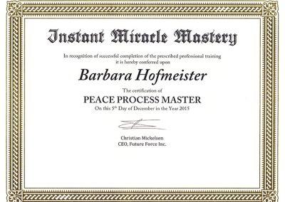 Peace-Process-Master